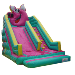Peggy slide - toboggan gonflable en location